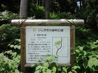 いしかわの森林50選.jpg