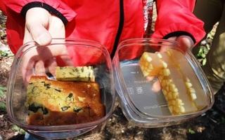 ウドのパウンドケーキとりんごのゼリー.jpg