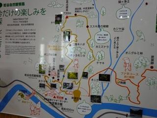 蛇谷イラストマップ.jpg